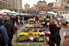 Union-Square-Greenmarket