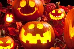 Halloween-Jack-StudyUSAblog
