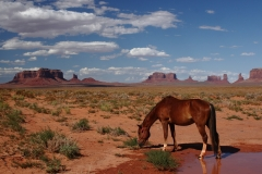 monument-valley-1088491_1280