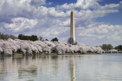 washington-monument-816642_960_720