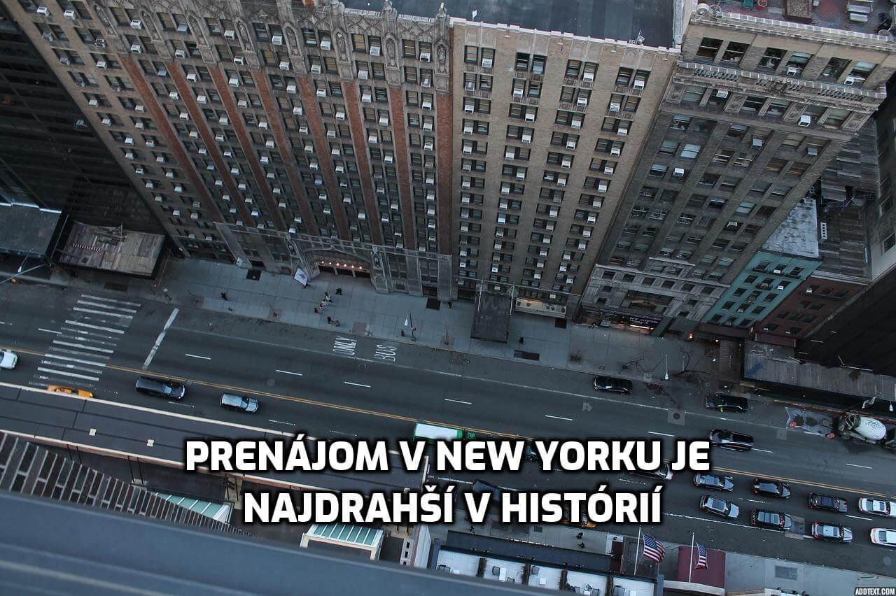prenajom v new yorku